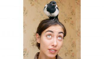 Samara Danel Chercheuse en cognition aviaire…