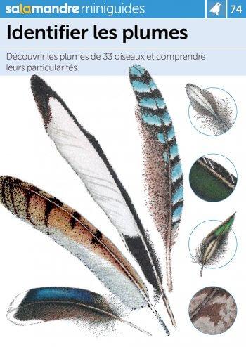 Miniguide 74 : Identifier les plumes
