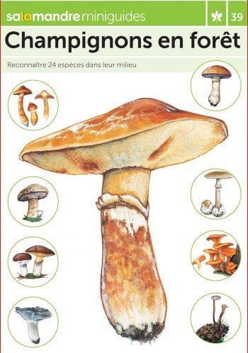 Miniguide 39 : Champignons en forêt