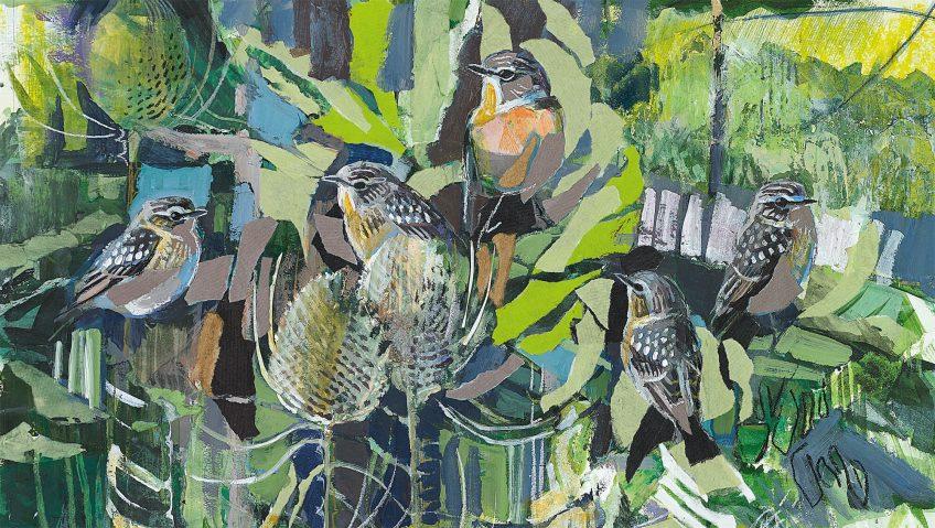Oiseaux, Carnets d'un bird lover - La Salamandre