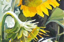 «Woodchat ShrikesSunflowers past their best, and a disappearing species » Pies-grièches à tête rousseTournesols un peu fanés, oiseau en voie de disparition. Acrylique. / © Nick Derry