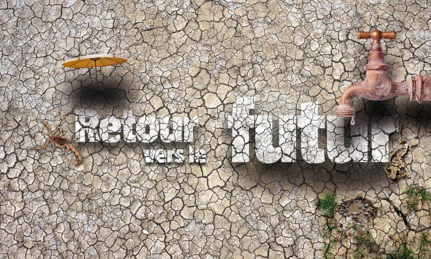 Economie d'eau : Retour vers le futur - La Salamandre