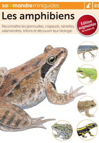 Miniguide 83: Les amphibiens