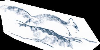 L'heure des loirs - La Salamandre