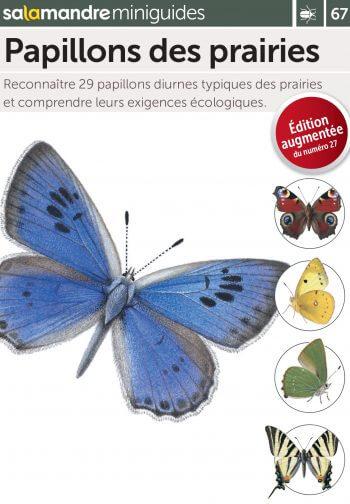 Miniguide 67 : papillons des prairies