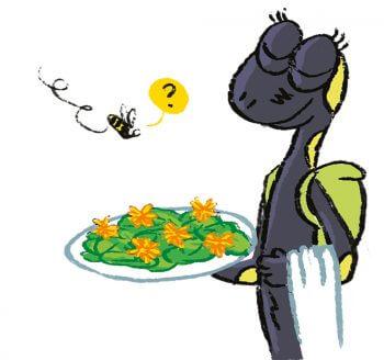 Un repas de fleur