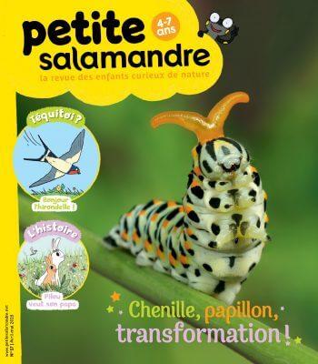 Couverture de La Petite Salamandre n°17