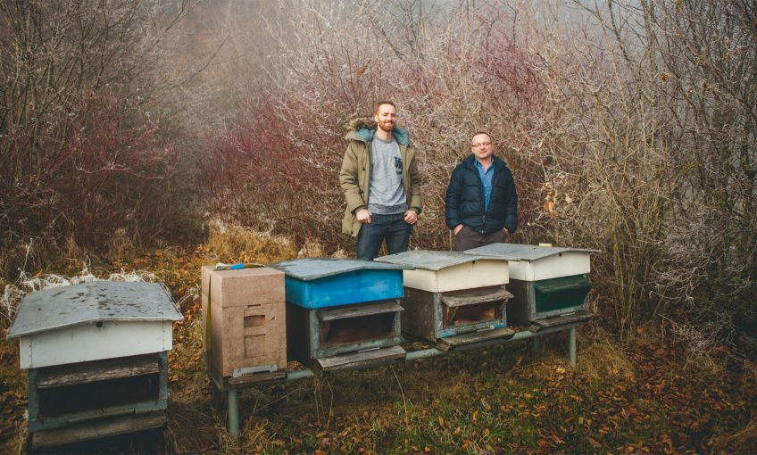 Des ruches connectées pour secourir les abeilles - La Salamandre