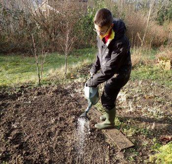 Plantez une prairie fleurie pour les insectes dans votre jardin