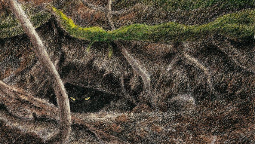 dessin de dragon dans un terrier