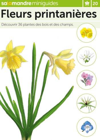 Miniguide 20 : Fleurs printanières