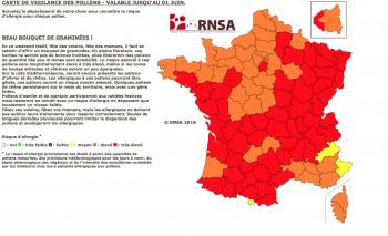 Zoom pollen France