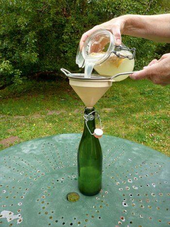 Recette de limonade au sureau