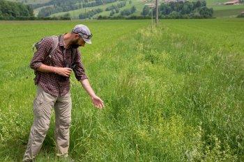 A la recherche du tarier des près - La Salamandre