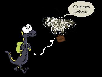 Sam et Simon le papillon demi-deuil
