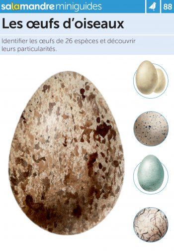 Miniguide 88 – Les œufs d'oiseaux