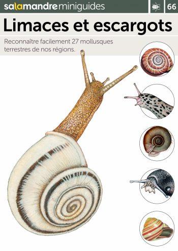 Miniguide 66 : Limaces et escargots