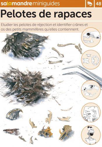 Miniguide 48 : Pelotes de rapaces