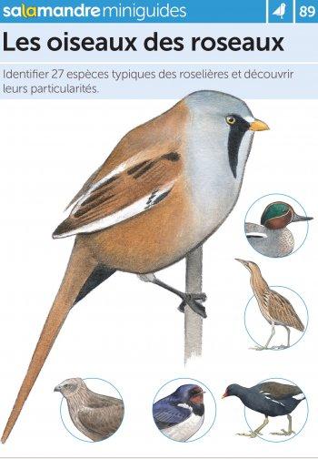 Miniguide 89 – Les oiseaux des roseaux