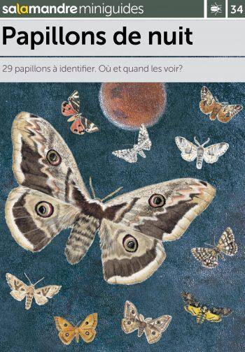 Miniguide 34: Papillons de nuit