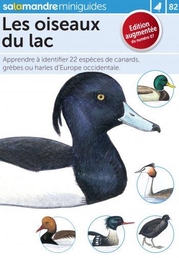 Miniguide 82: Les oiseaux du lac
