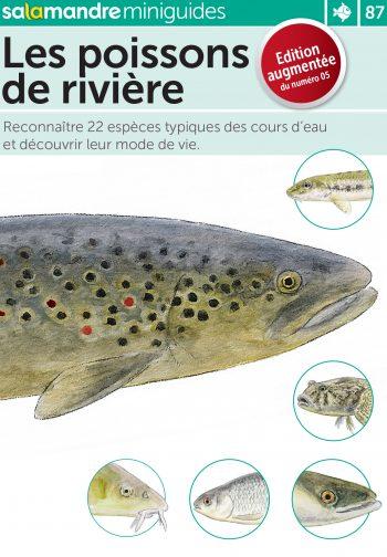 Miniguide 87 : Observer les poissons de rivière