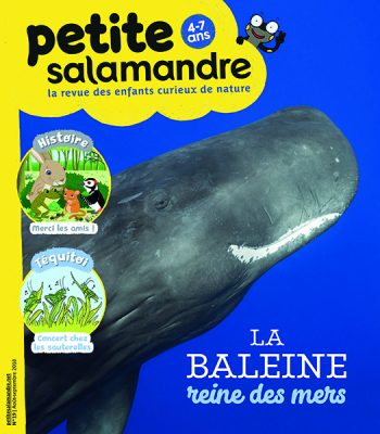 Petite salamandre 19 (01/08/2018) ; La baleine, reine des mers