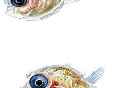 Larves de poisson-lune / © Cyril Girard, editions-mediterraneus.fr