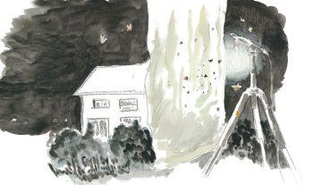 Nuit blanche  pour un sphinx - #1