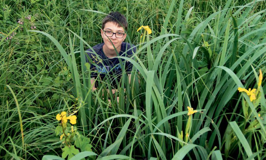 Comment installer une petite zone de marais dans son jardin ?
