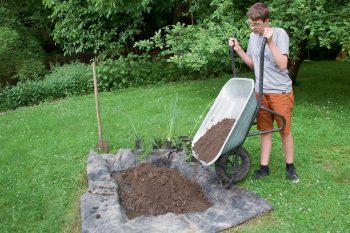 Installez une petite zone de marais dans votre jardin - La Salamandre