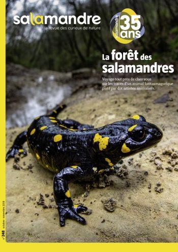 Couverture de La Salamandre n°248