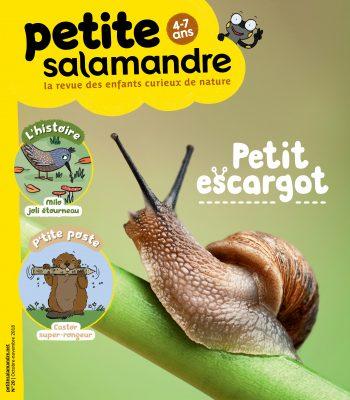 Couverture de La Petite Salamandre n°20