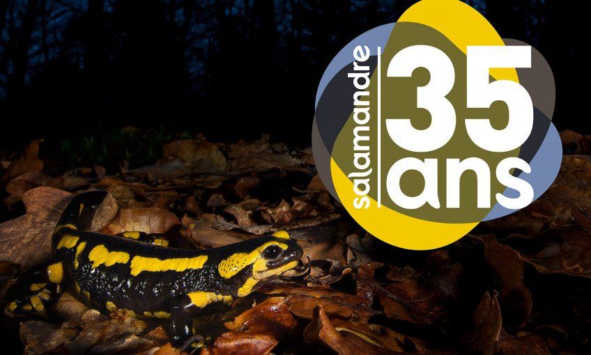 La Salamandre fête ses 35 ans !
