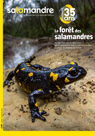 abonnement revue la salamandre