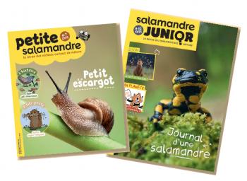 Petite Salamandre et Salamandre Junior oct-nov 18