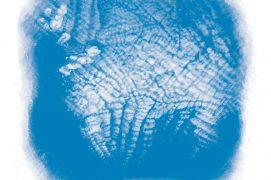 Cirrocumulus : s'il s'étend, une détérioration du temps est à prévoir / © Cécile Aquisti