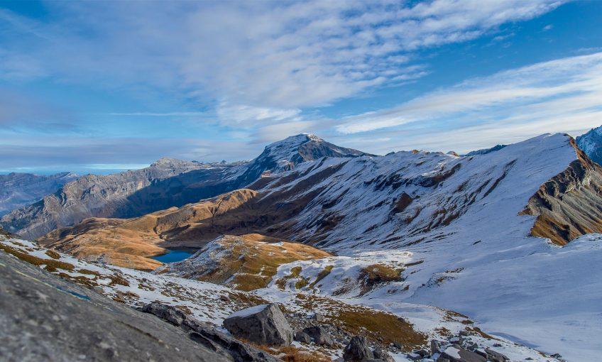 Naissance d'un premier gypaète barbu face au mont Blanc