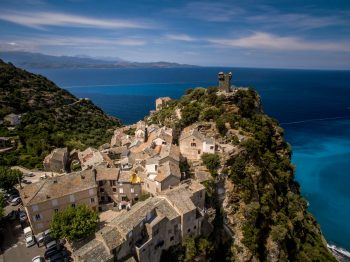 Quel est l'état de la population de gypaète barbu en Corse ?