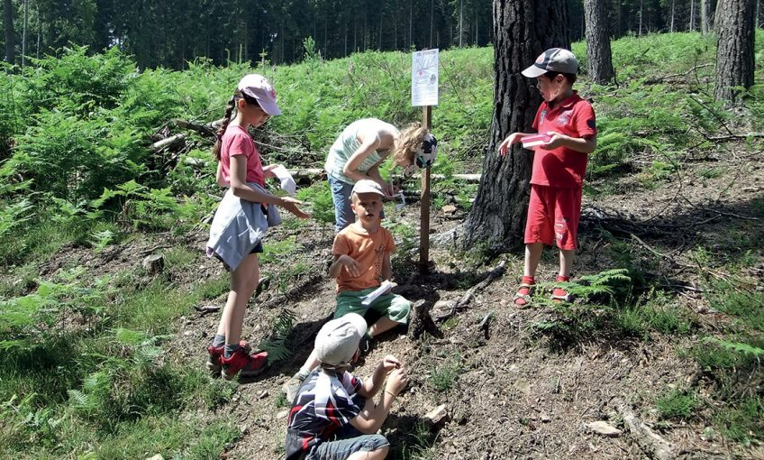 Comment faire connaître et aimer la nature au plus grand public ?