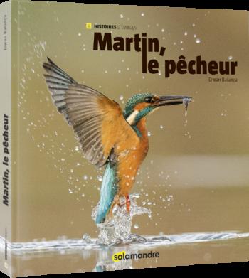 livre photo sur le martin-pêcheur