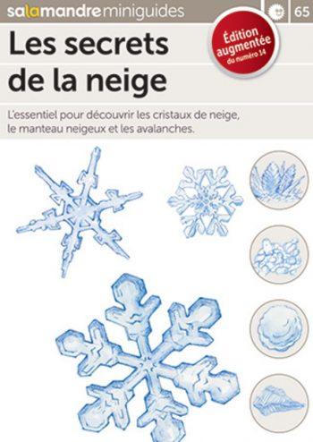 Comment lire la neige ? La réponse du nivologue Robert Bolognesi
