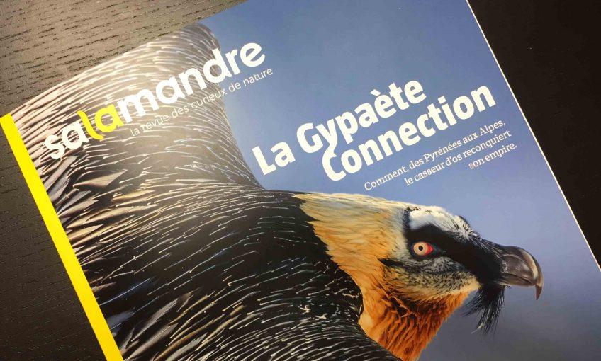 La Gypaète Connection La Salamandre n° 249