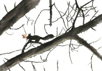 ecureuil-hiver-article-sans-logo-article