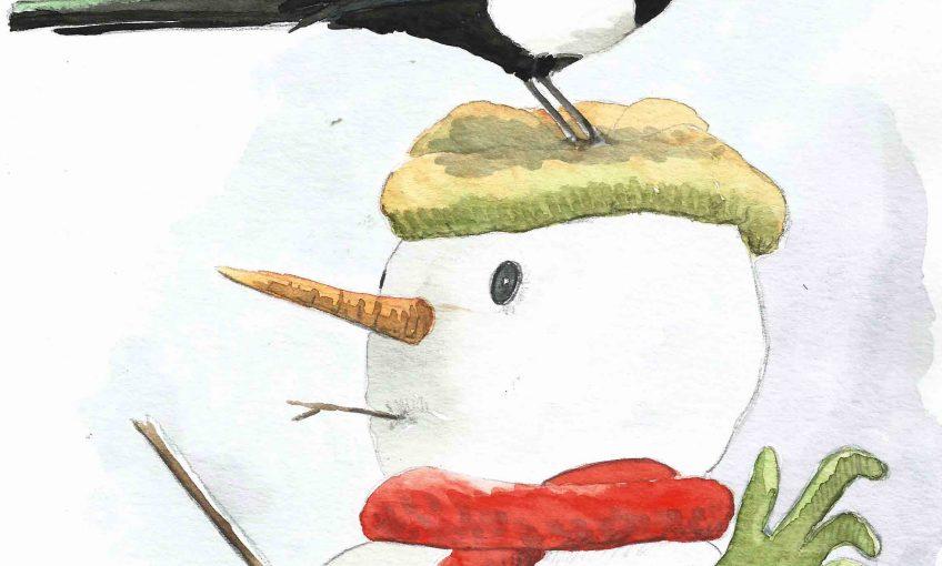 Le gant disparu à Noël, la pie accusée
