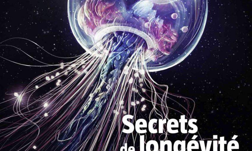 Salamandre 250 secrets de longévité