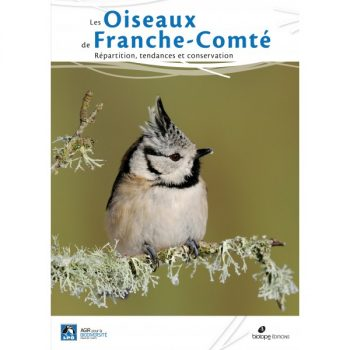 oiseaux-de-franche-comté-répartition-tendance-et-conservation