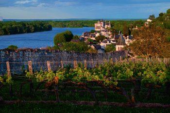 Le château de Montsoreau et la vallée de la Loire