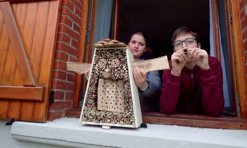 Construisez un nichoir pour les abeilles sauvages