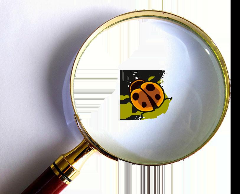 Sébastien Touache, 422737 - Pixabay